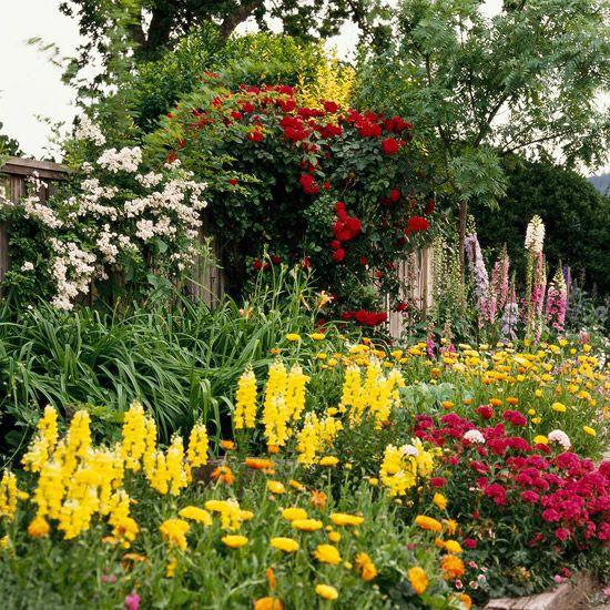 212 best images about flower garden ideas on pinterest for Annual garden designs