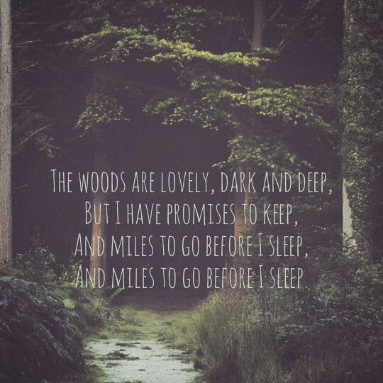 robert frost speech and anylisation Lifespan: (1874–1963) in eleven books of poetry and miscellaneous other writings published between 1913 and 1962, robert frost established himself as the unofficial poet laureate of the united states.