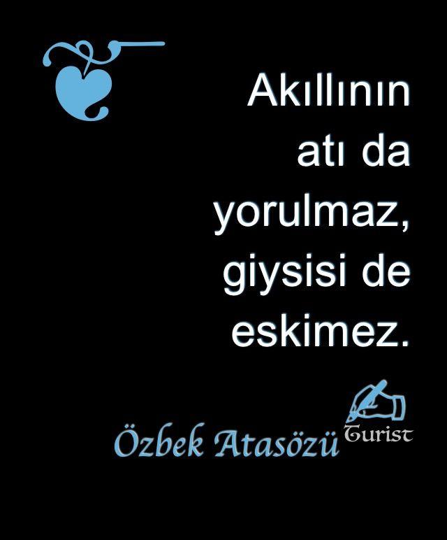 Akıllının atı da yorulmaz, elbisesi de eskimez.., Turist ... ..#sözler#manalısözler##güzelsözler#şiir#anlamlısözler#hayatadair#felsefe#atasözü#aşk#sevgi#insan#alıntı#şair#kişiselgelişim