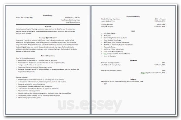 History Essay Introduction Outline For Opinion Essay