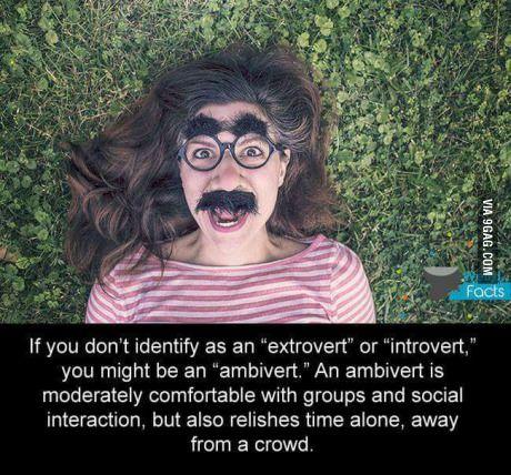 Hey random ambivert!