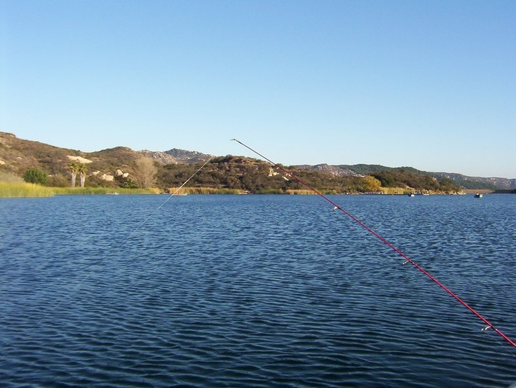 49 best fisherman 39 s frenzy top places for fishing in u s for Freshwater fishing san diego