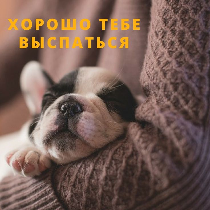 позитив картинки для хороших снов