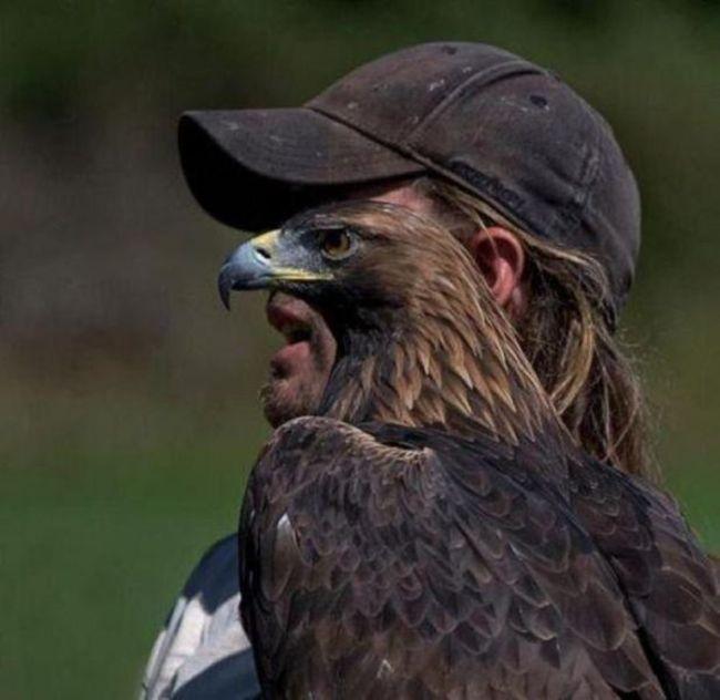 << Hawkman >>