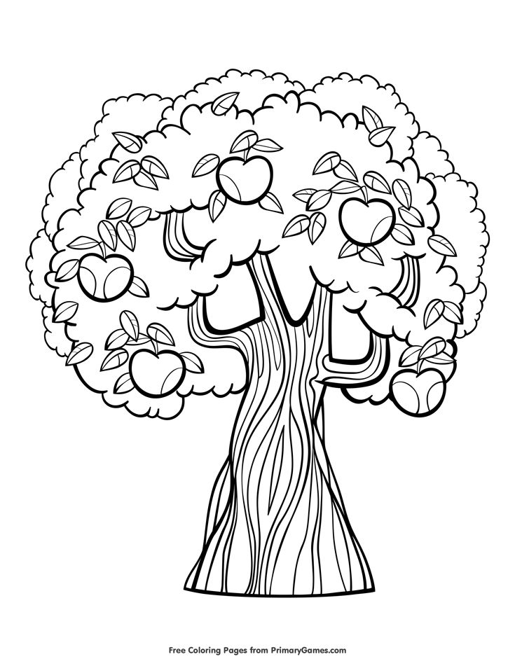 Fall Coloring Page Apple Tree