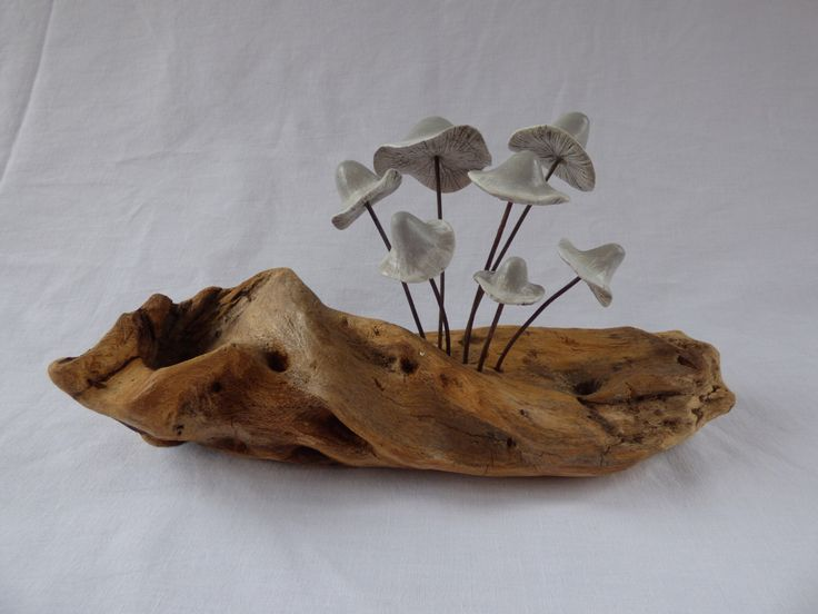 Clay Fungi on New Forest wood by SharwoodDecor on Etsy https://www.etsy.com/uk/listing/469850721/clay-fungi-on-new-forest-wood