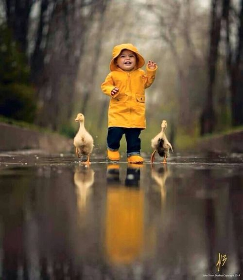 the ducks who dance with you in the rain will most likely walk with you in a storm