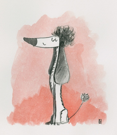 Tomasz Janeczko - poodle on Flickr. Just for fun