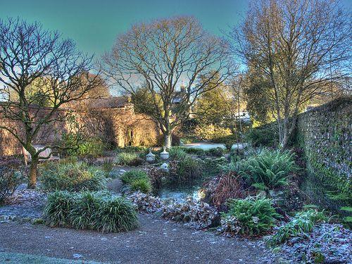 Small pond Rowallane Garden