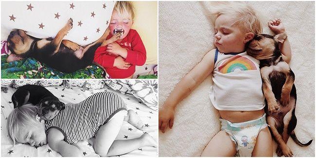Vemale.com - Foto viral pasangan anak anjing dan balita yang sedang tidur ini lucu banget dan dijamin bisa bikin Anda gemas.�