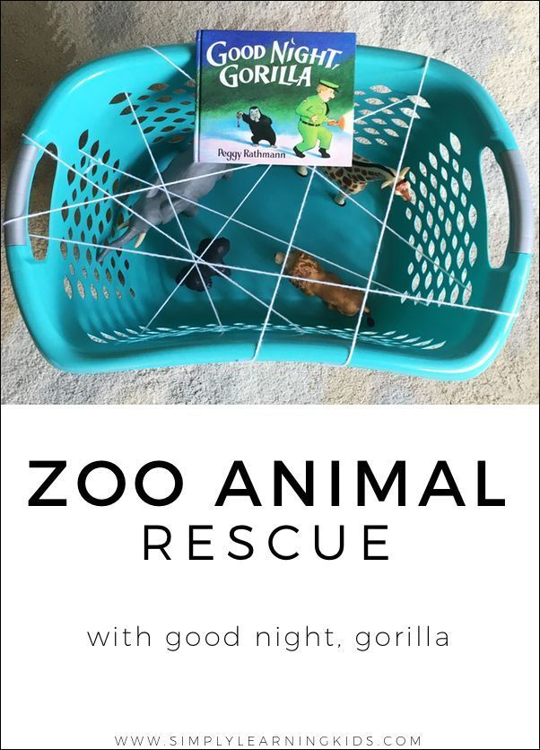 Zoo Animal Rescue With Good Night, Gorilla - Simply Learning