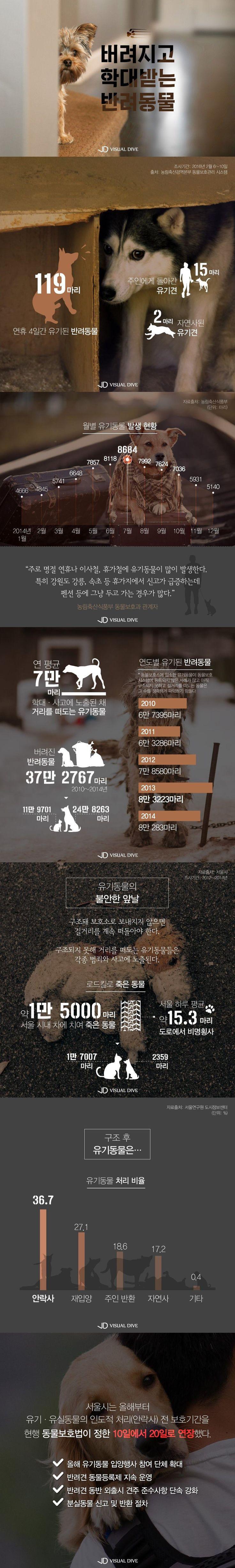 5년간 유기된 반려동물 37만 마리…보호대책 '시급' [인포그래픽] #dog / #Infographic ⓒ 비주얼다이브 무단 복사·전재·재배포 금지