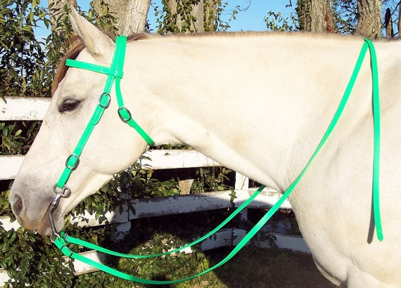 Any Size Lime Green WESTERN Horse BRIDLE & REINS by nar0402, $40.00