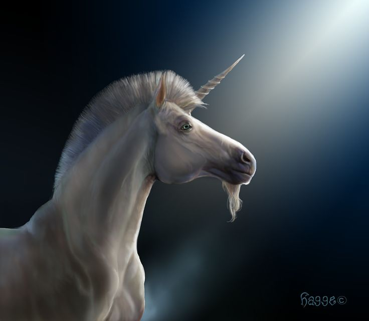 The unicorn is depicted on the Royal Arms of Scotland    Unicorn I by Hagge.deviantart.com on @deviantART