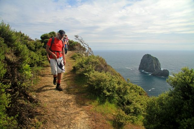 Bay of Islands Walking Weekend - Bookings open. Visit the website to view the Walks Programme and further booking instructions http://boiwalkingweekend.co.nz/walks-program/