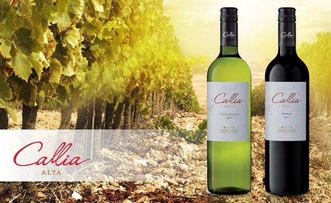 Argentyńska Callia pod lupą - wino-blog.pl