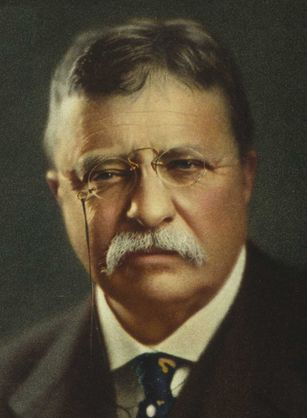 theodore-roosevelt-biography.png (307×418)