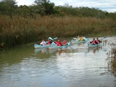 Nukakamma Canoe Trail  Experience one of the most sought-after river trails in the country by doing the overnight Nukakamma Canoe Trail along the Sundays River.