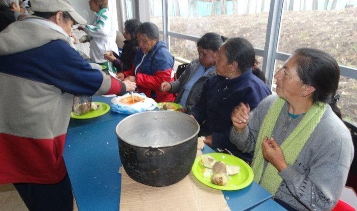 Huerta casera, una opción para de vida para los adultos mayores de Pasto | HSB Noticias
