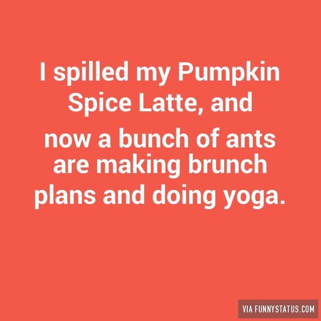 98 best I'm the Pumpkin Scrooge. I HATE PUMPKIN season ...