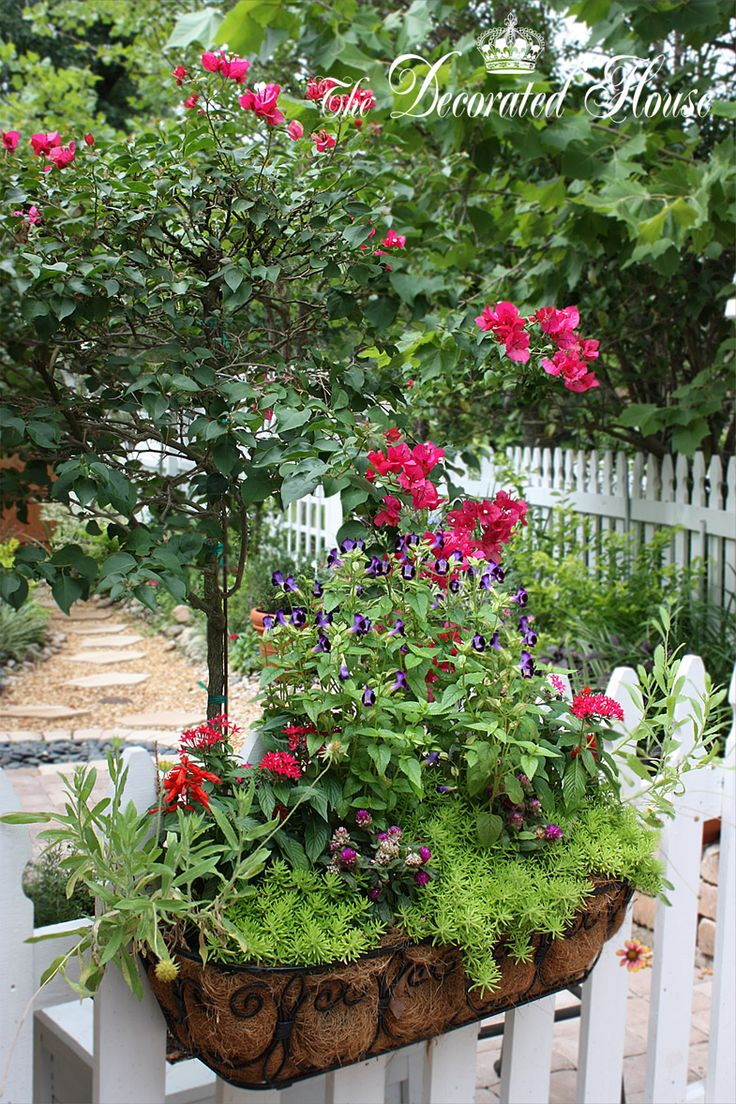 141 Best Images About Window Box Ideas On Pinterest