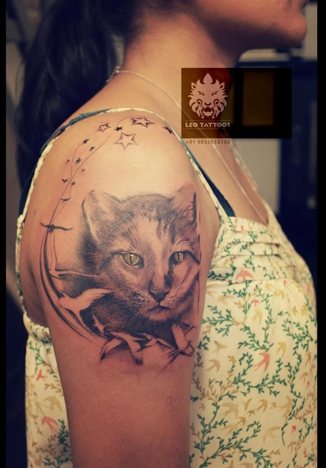 cat # portrait # tattoo # leotattoos # matunga