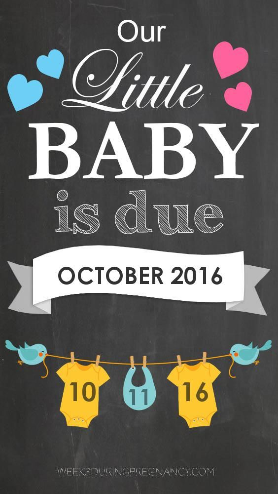 Get week by week and specific information for my estimated due date, 10/11/2016!