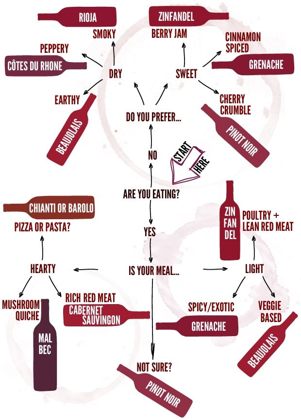 simple red wine infographic