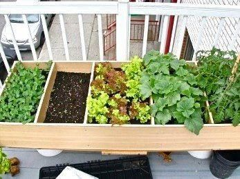 A bookshelf repurposed into a planter!   Much better than tossing it into the garbage!