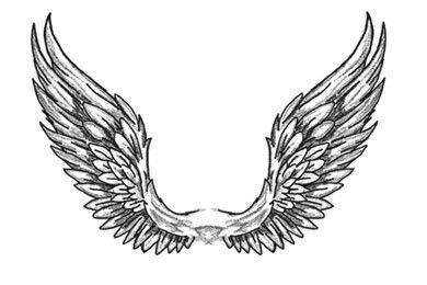 angel wings drawingangel wing drawing wings drawing