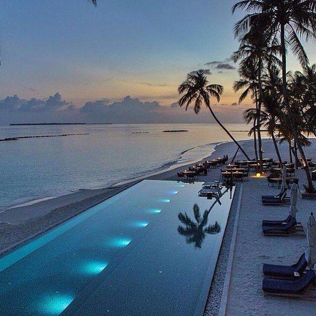 Maldives @luxeresors #maldives #maldivene #paradise #palmtrees #pool #traveling #instagood #beautiful #gorgeous #amazing #awesome #networking #travelphotography #instagood #luxur #instamood #instadaily #igdaily #igers #network #cash #fashion #interior #money by travel2222