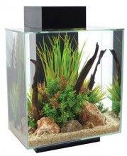 The Fluval EDGE aquariums 46 L