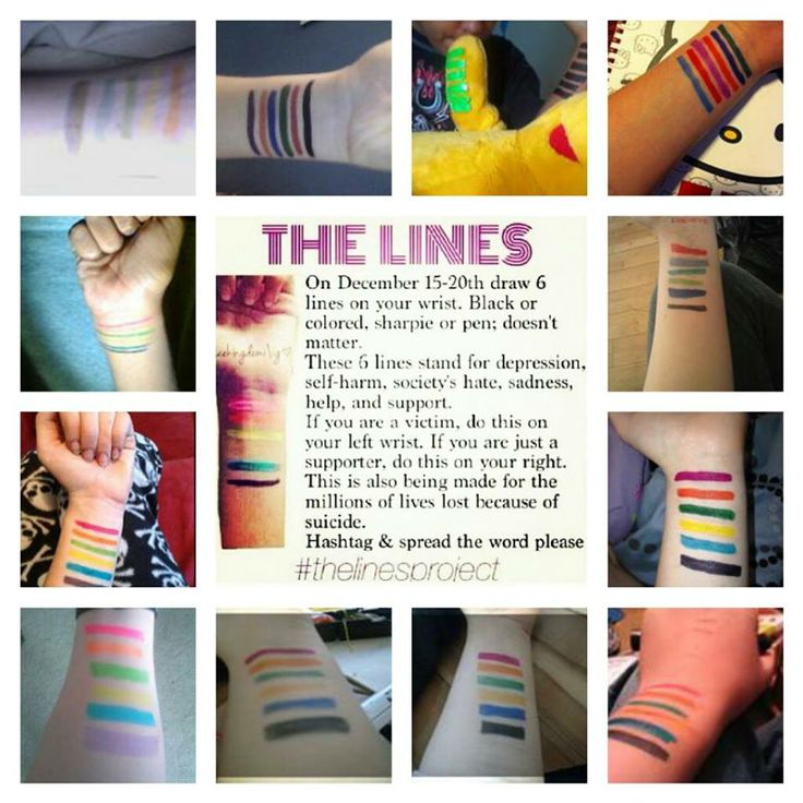 The Lines Project