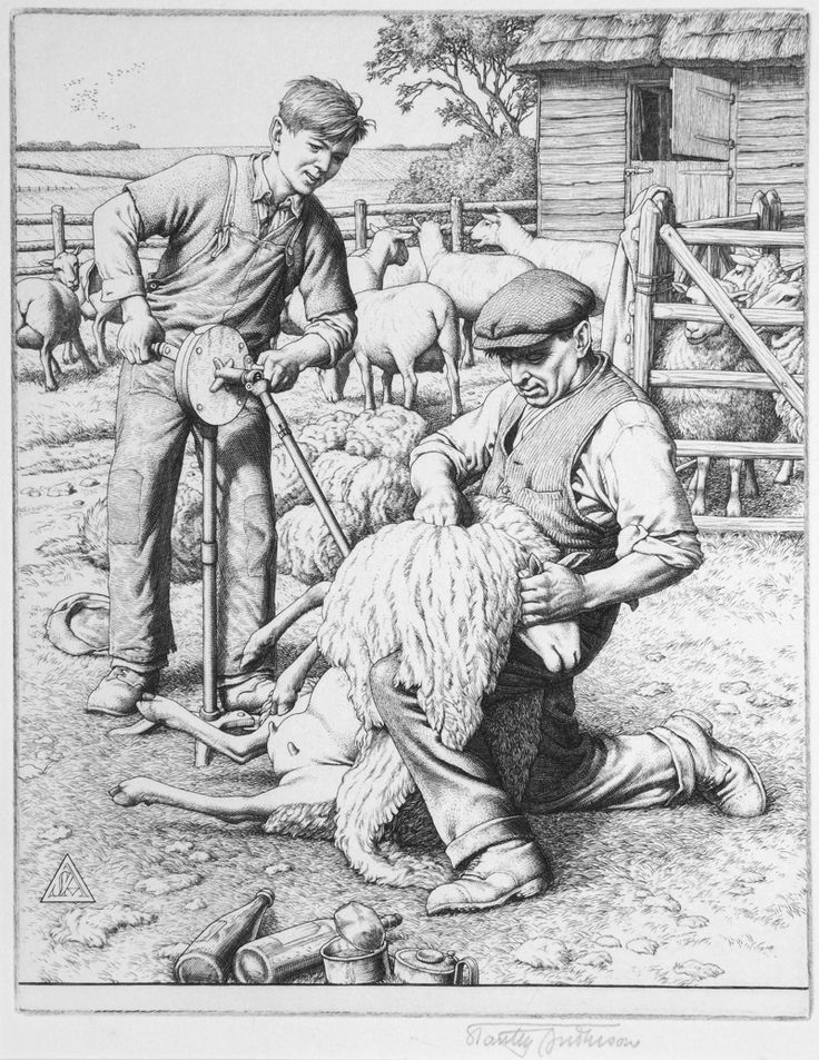 SHEEP-SHEARING by Stanley Anderson (British 1884-1966) - engraving