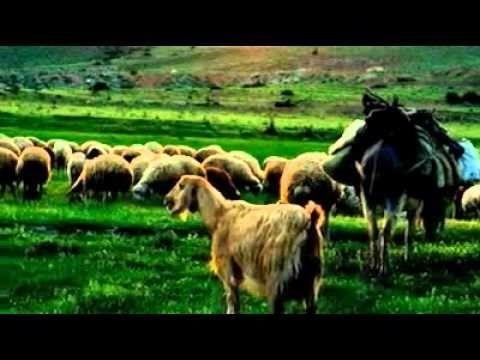 EŞEĞİ SALDIM ÇAYIRA - (SÖZ) KAZAK ABDAL - YouTube