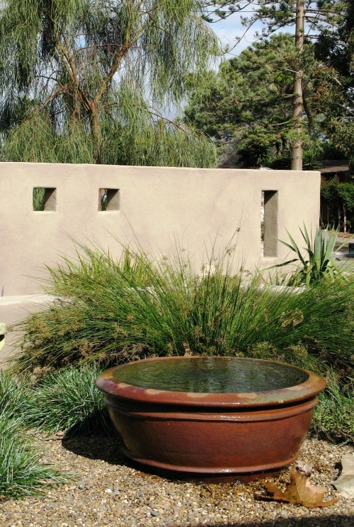 17 best images about frog pond ideas on pinterest for Pot pond ideas
