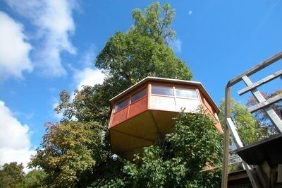 """The four tree houses """"Les Nids"""" - Suisse Tourisme"""