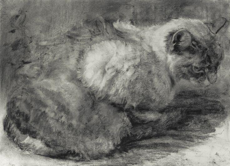 "Michael John Davis  Whole Cat  charcoal on Paper 19"" x 25"""