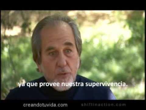Bruce Lipton, Percepciones Curativas