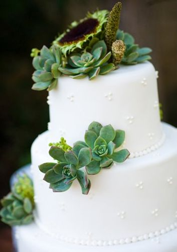 Succulents and cake: Cakes Ideas, Beautiful Colors, Cakes Toppers, Succulent Cakes, Succulents Wedding Cakes, Cool Ideas, Succulent Wedding Cakes, Cake Toppers, Succulents Cakes