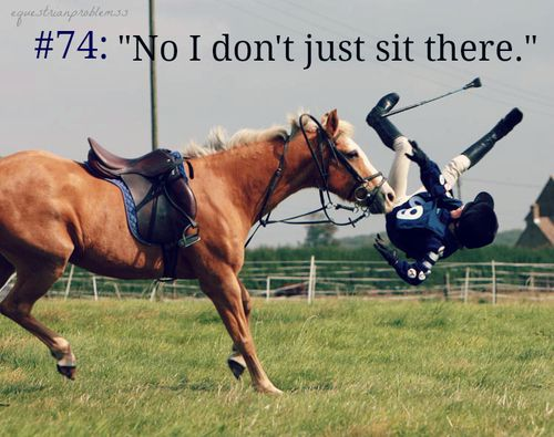 What I say whenever people tell me it's not a sport and all I do is sit there. #Equestrian Problems