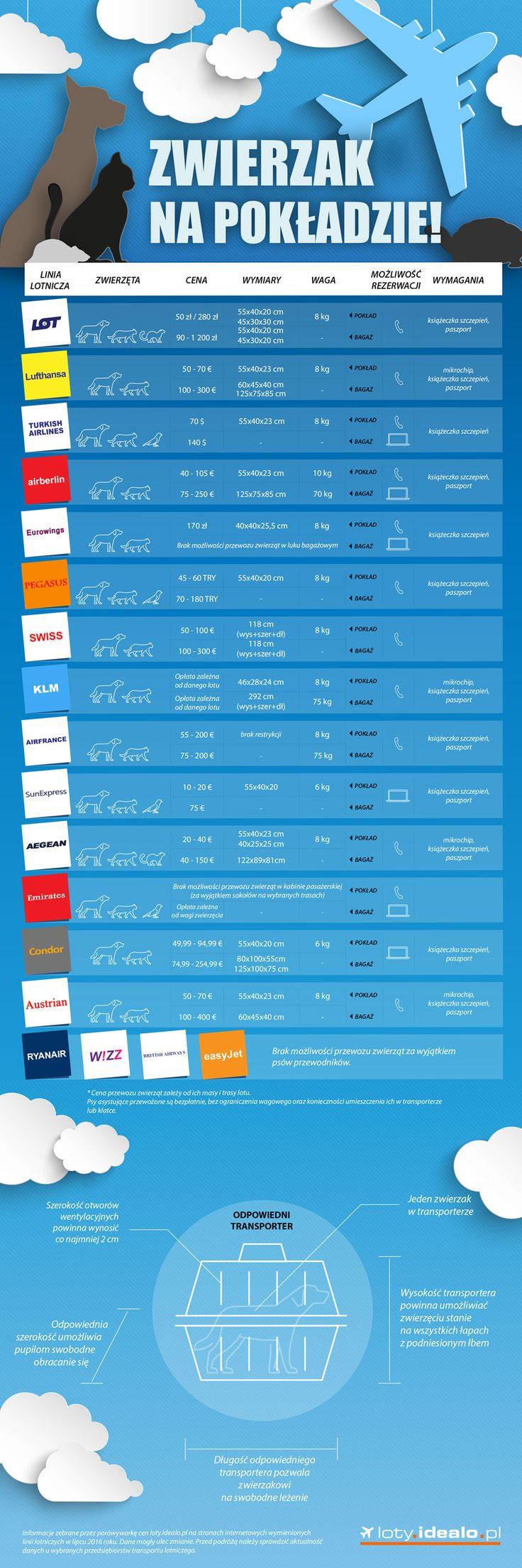 Jeśli planujecie podróż samolotem ze swoim zwierzakiem, koniecznie sprawdźcie naszą infografikę. 🐶 🐱 Dowiecie się, którymi liniami lotniczymi przewieziecie pupila najwygodniej i najkorzystniej: http://bit.ly/2bbCZaA