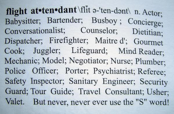 flight attendant Jet Setter - Dream Job Pinterest Flight attendant