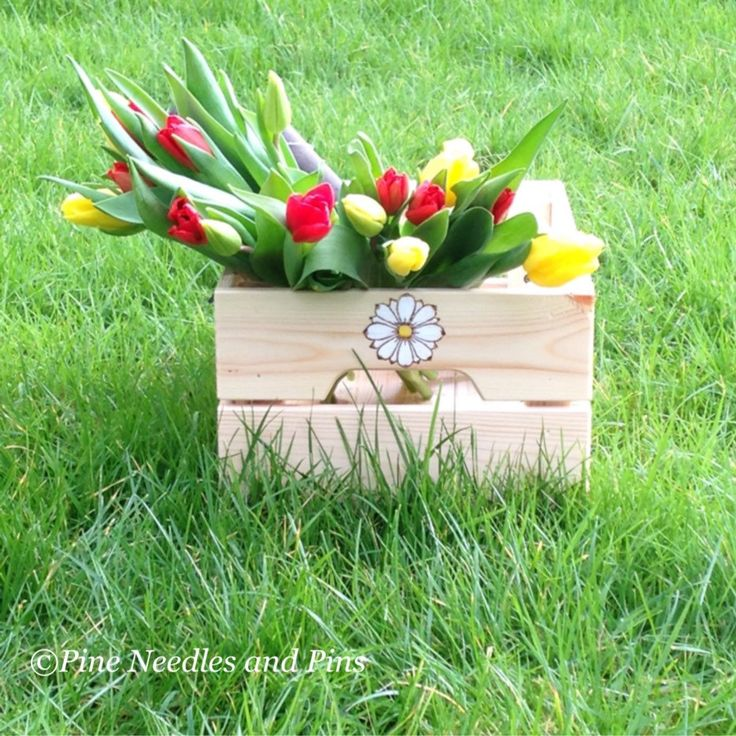 Such a beautiful day for taking photos. Look at our new gardening crate, available now for immediate delivery, just in time for Mothers Day