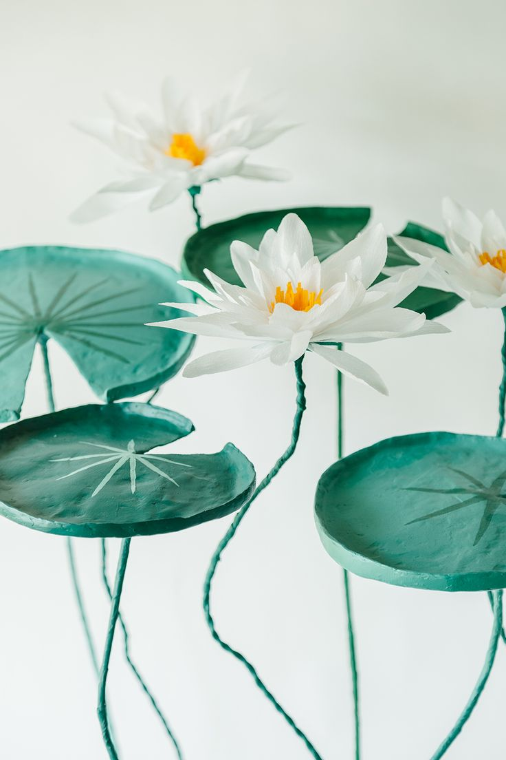 Crepe Paper Waterlilies - Bramble Workshop