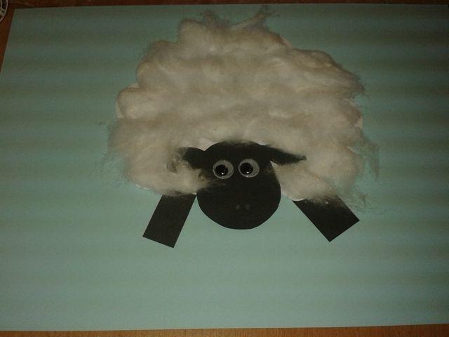 ovečka 2  sheep