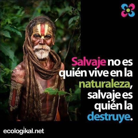 Sobre la naturaleza, la destrucción de bosques, la contaminación global y mas...