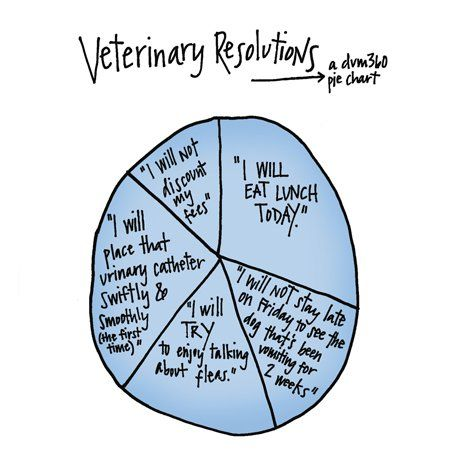 Veterinary professionals have their own set of resolutions, and the rest of the world wouldn't possibly understand.