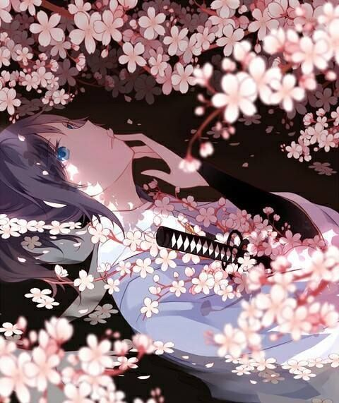 Beautiful Eyes — sam2119931:   So Many Pink Sakura.