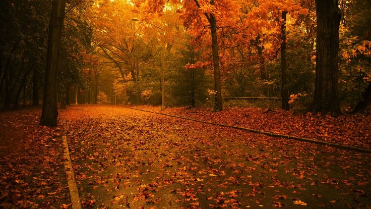 Its Time For Autumn háttérkép